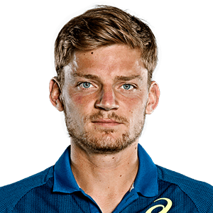 Photo of David Goffin